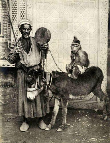 Topeng Monyet pada masa Kesultanan Ottoman. Seorang yang membawa Keledai dengan monyet diatasnya.